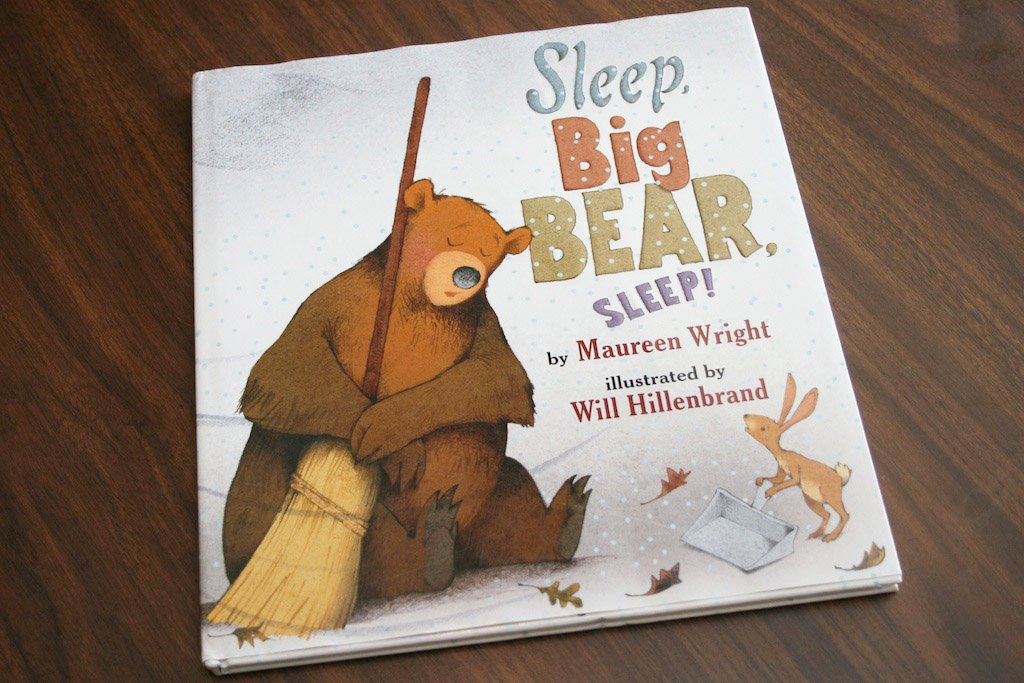 SleepBigBearSleep Cover