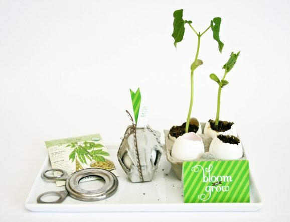 Earth Day Party Favors PagingSupermom.com
