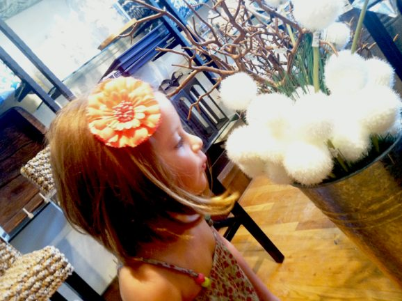 The Model's Little Sister Blowing the Allium Blossoms #zgallerie
