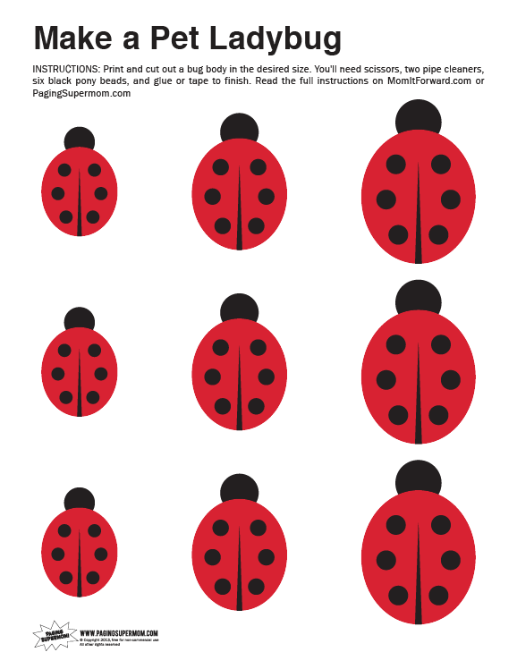 Printable ladybug template cake ideas and designs