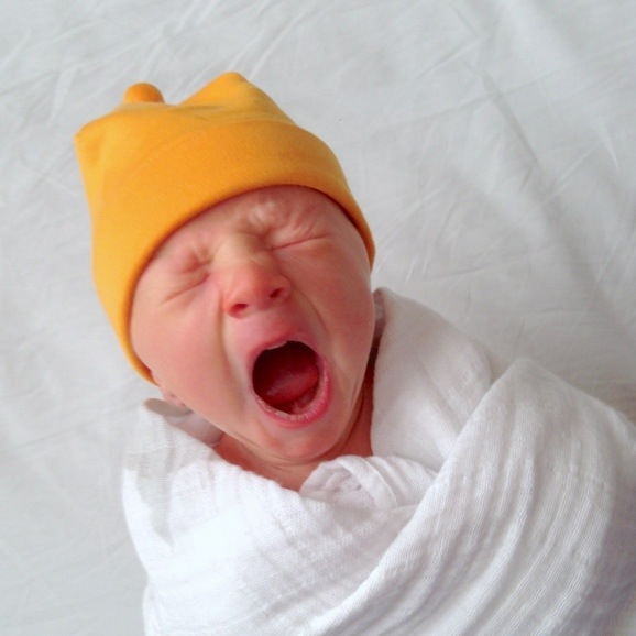 meet baby Rockwell