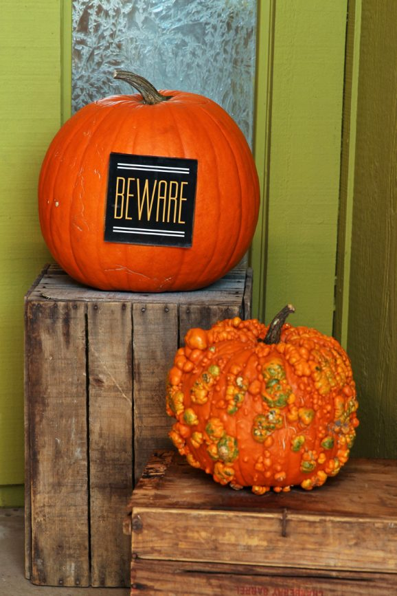 Put a spooky message in your pumpkin -- this looks EASY!  Tutorial @PagingSupermom #shutterflydecor