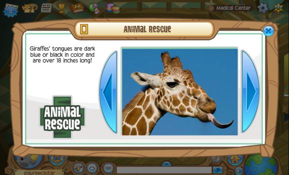 Animal Jam Giraffe
