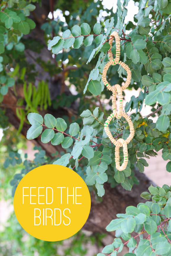 No mess bird feeder made from Cheerios -- no mess and the kids would love it. via @PagingSupermom