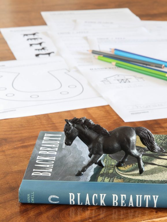 Printable Black Beauty Worksheets and Book Club Ideas