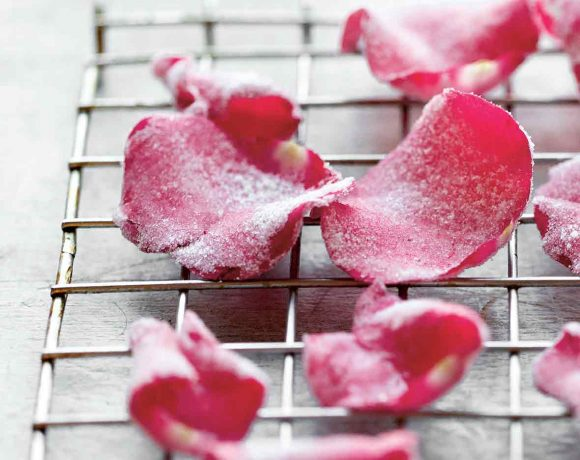 Enchanted Rose Recipes For Beauty & the Beast