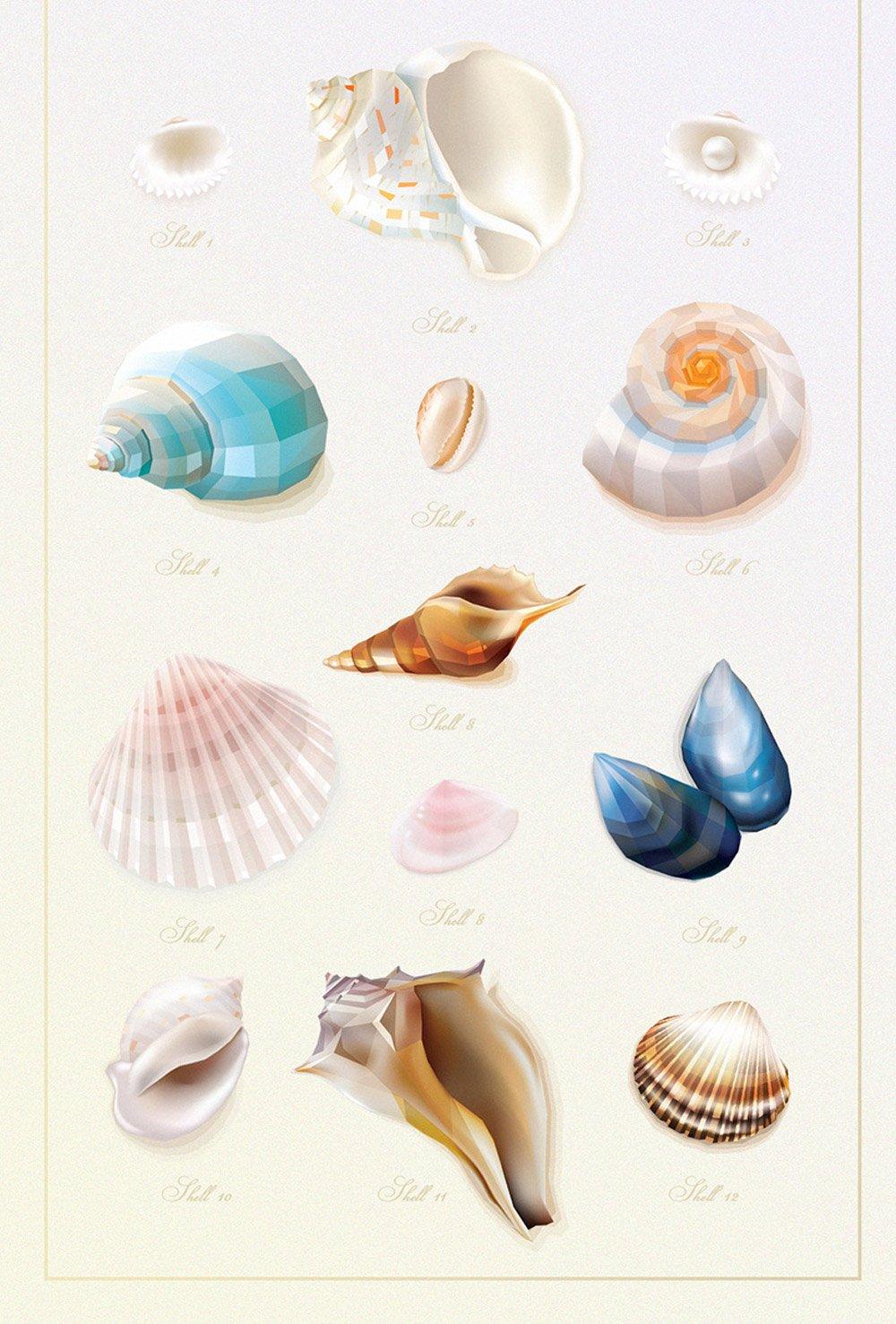 Vector Seashells Thumbnail