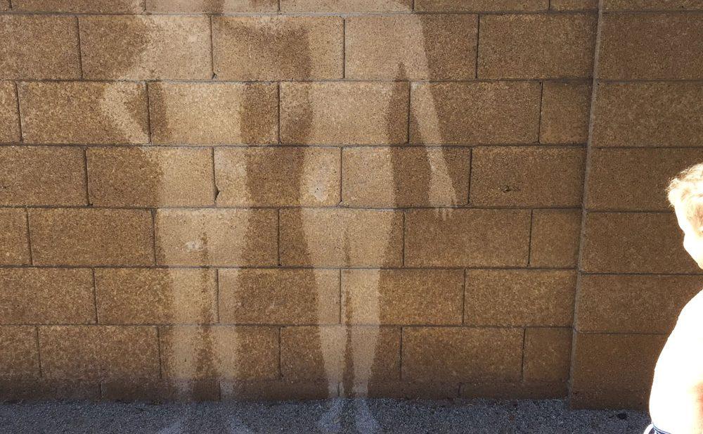 Hose Wall Murals