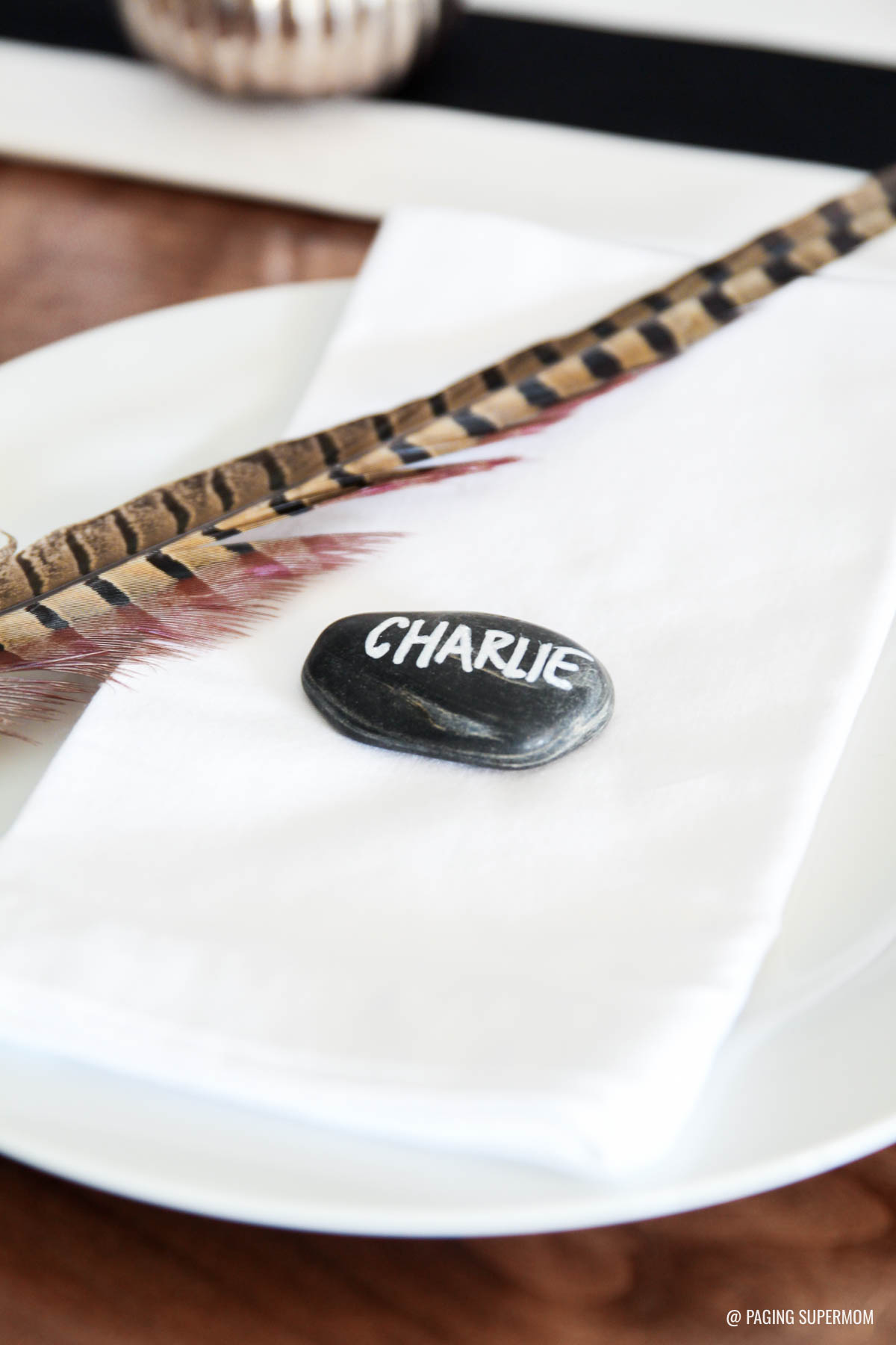 Easy Thanksgiving Placecard Ideas - love the pebble and feather via @PagingSupermom